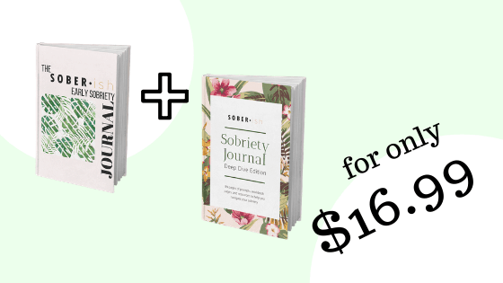 two sobriety journals for 16.99