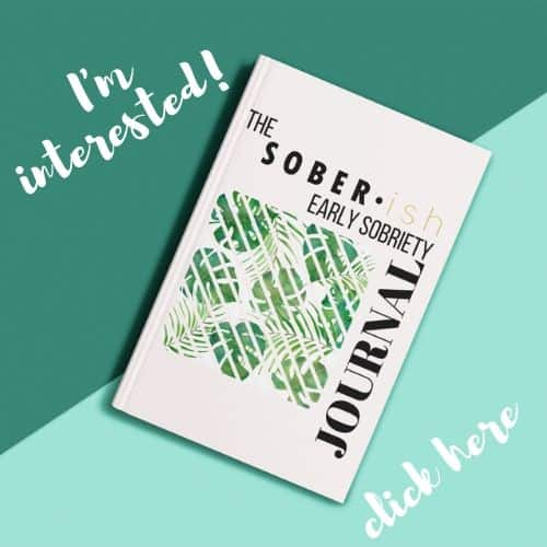 early sobriety journal by soberish