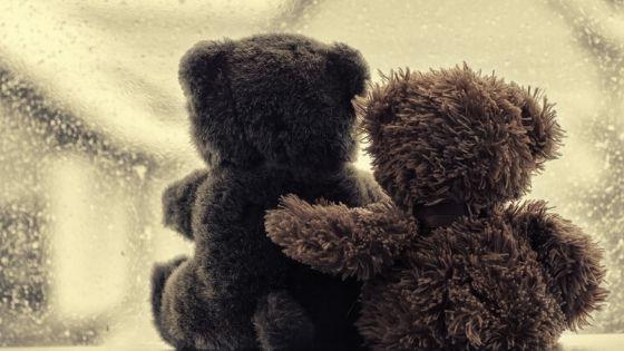 teddy bears at window