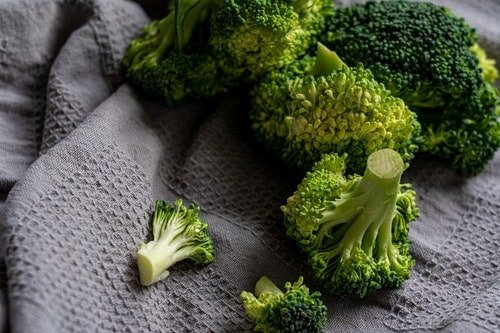 healthy broccoli for good eating habits