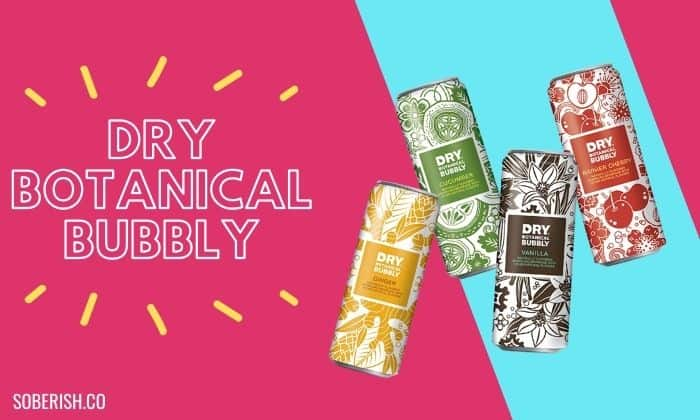 picture of alcohol alternative soda dry bubbly botanicals